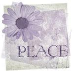 Vintage Peace Daisy
