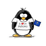 Indiana Penguin