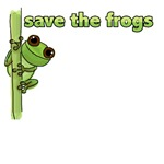 Cute green frog - Save the Frogs