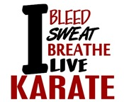 Bleed Sweat Breathe Karate