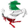 Italian Stallion Italy Flag