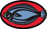 Graphic Flounder