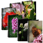 Nature Photography on Garden Journals