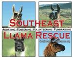 Llama Photo Items