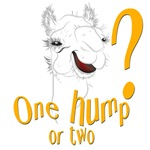 Funny Hump Day Camel
