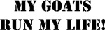 Goats-Run My Life