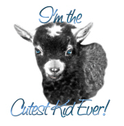 Goat -Cutest Kid Ever