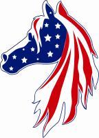 USA Patriotic Flag Horse