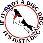 Disc/Frisbee Dog