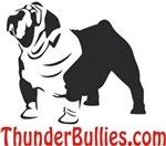 Thunder Bullies