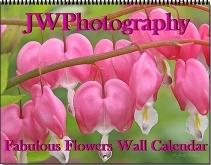 Assorted Calendars! Many Styles to Choose From!