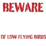 BEWARE OF LOW FLYING BIRDS