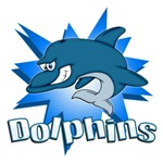 DOLPHINS TEAM T-SHIRTS AND GIFTS