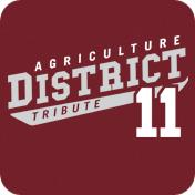 District 11 Design 3