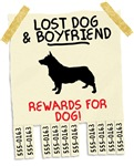 Lost Dog And Boyfriend