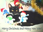 Seasonal greetings and celebrations