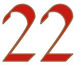 Mink 22