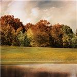 Graves Meadow Landscape