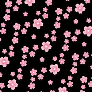 Black Cherry Blossoms Pattern