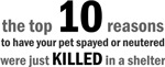 10 Reasons: Spay/Neuter