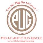 Let No Pug Go Unloved