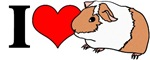 I (Heart) Guinea Pigs!