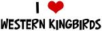 I Love Western Kingbirds