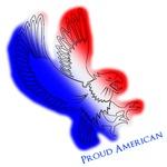 American Flight