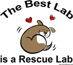 Best Rescue Lab