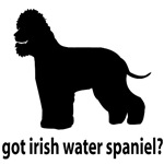 Got Irish Water Spaniel?