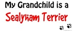 Sealyham Grandchild