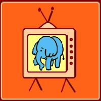 Elephant Wildlife Programme
