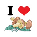 I Heart (Love) Mushrooms