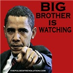 Big Brother - Obama