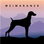 Weimaraner Mountain Sunrise