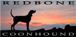 Redbone Coonhound Sunset
