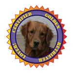 Certified Golden Retriever Lover!