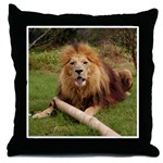 Cameron's Toy Throw Pillows