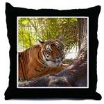 Tiger Bengali Throw Pillows