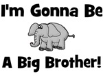 Gonna Be Big Brother (elephant)