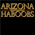 arizona haboobs