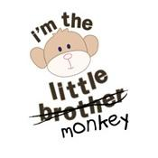 little brother/monkey
