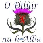 Scotland Flags & Thistles