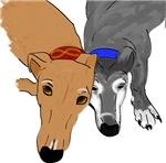 Greyhound Gear!