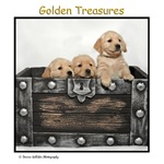 Golden Treasures