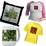 Plants, Flowers, Trees