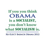 Obama is hardly a Socialist