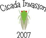Cicada Invasion 2007