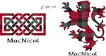 Celtic Knot / Lion