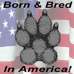 Born & Bred In America